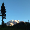 2013-09-13 - Tree and Mount Rainier, WA, USA