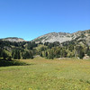 2013-09-13 - Meadow west of Sunrise trailhead in Mt  Rainier National Park, WA, USA