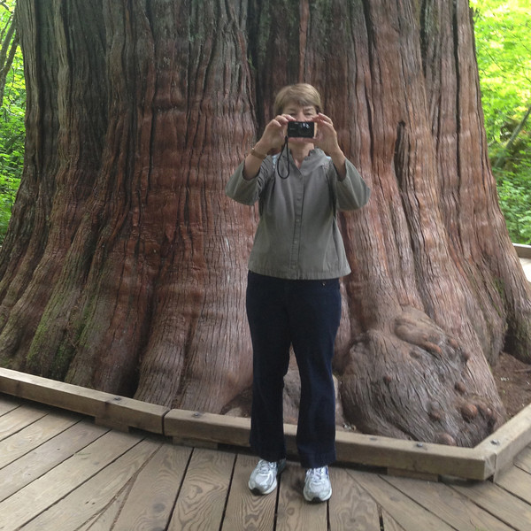 2013-09-13 - Rosemarie Oliver takes a photo of H  Pike Oliver photographing her at Patriarchs Grove on Mt  Rainier